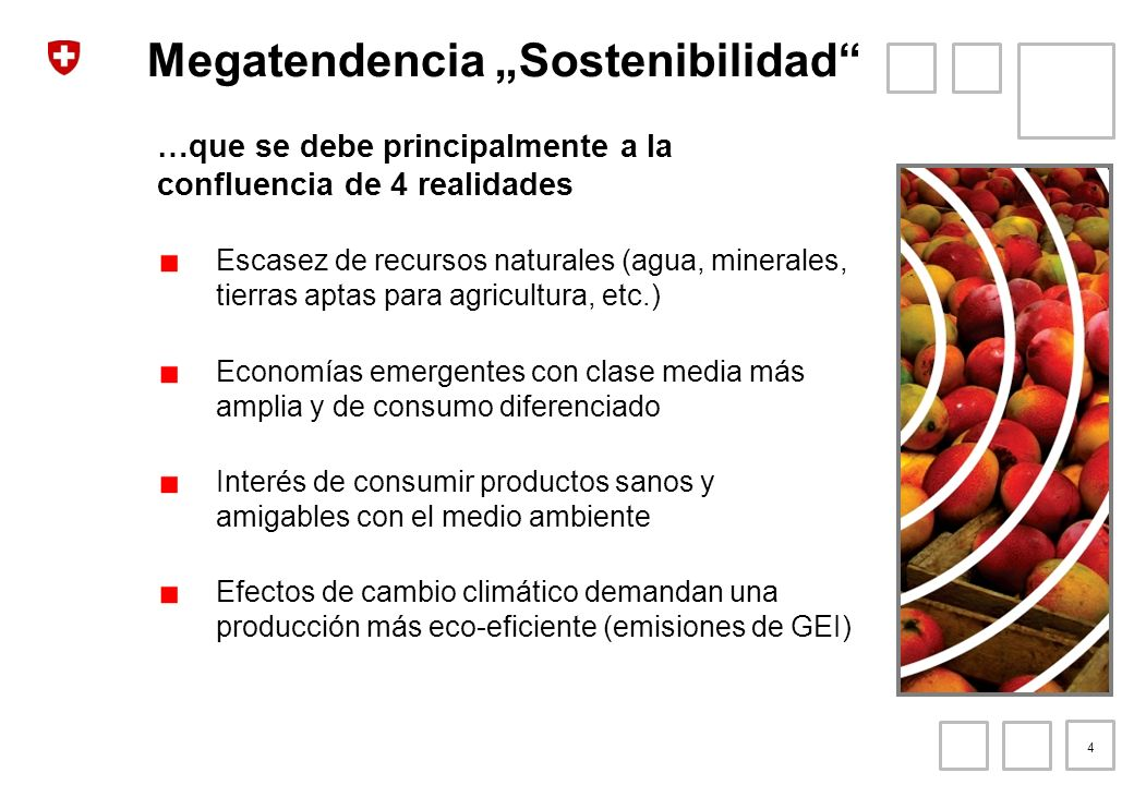 "Megatendencia ""Sostenibilidad"