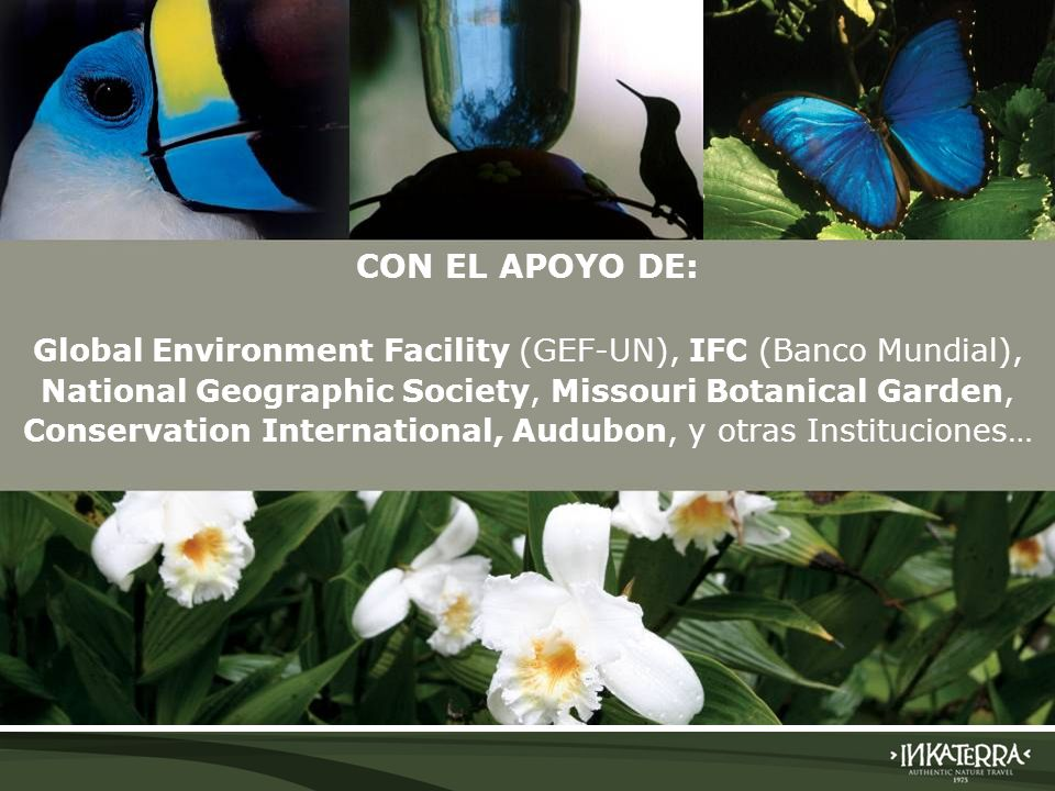 CON EL APOYO DE: Global Environment Facility (GEF-UN), IFC (Banco Mundial), National Geographic Society, Missouri Botanical Garden,