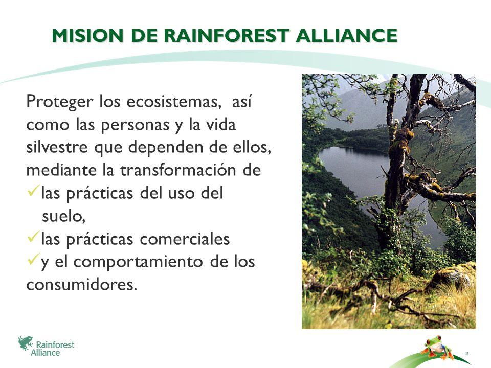 MISION DE Rainforest Alliance