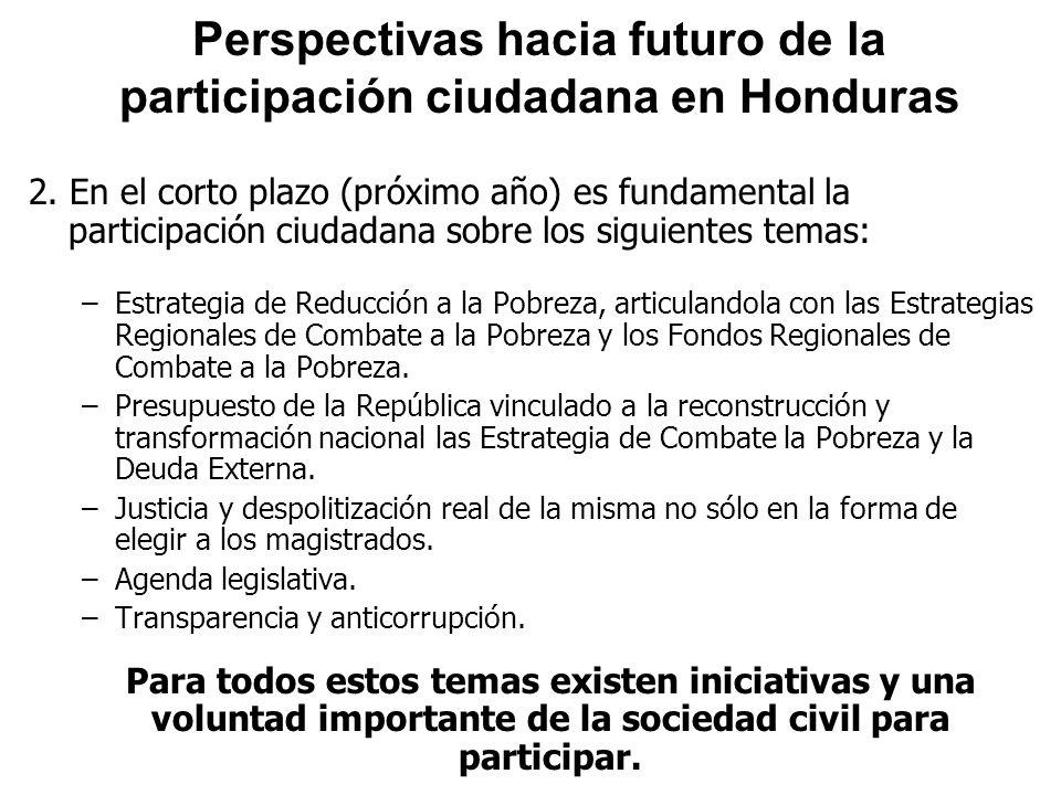 Perspectivas hacia futuro de la participación ciudadana en Honduras