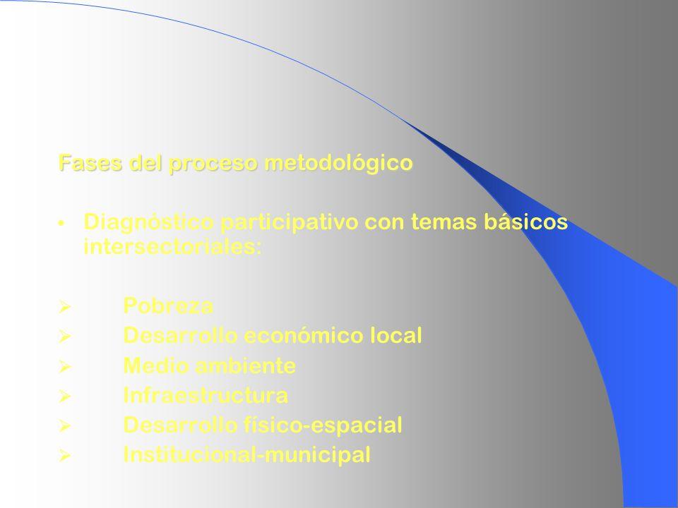 Fases del proceso metodológico