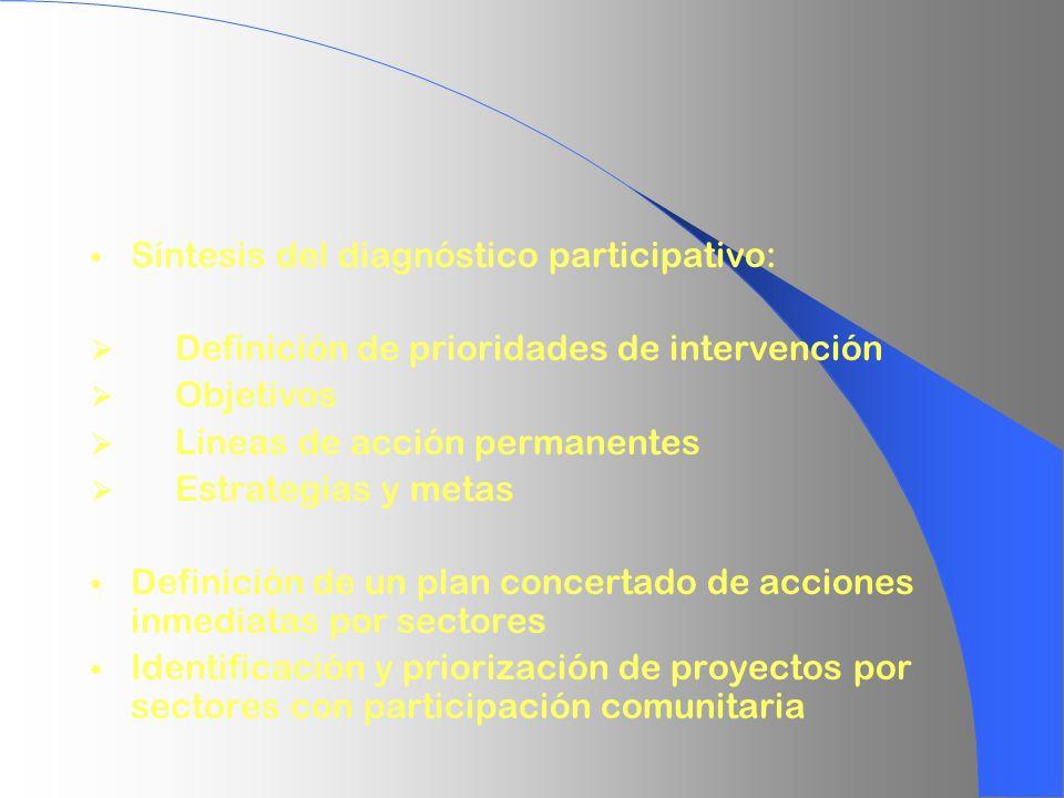 Síntesis del diagnóstico participativo: