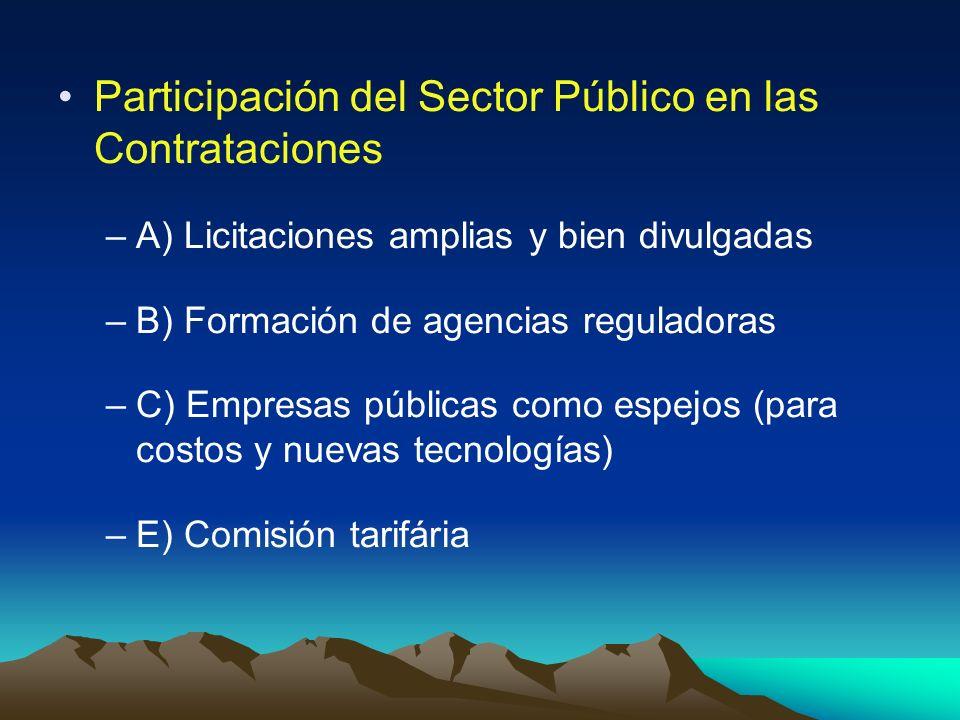 Participación del Sector Público en las Contrataciones