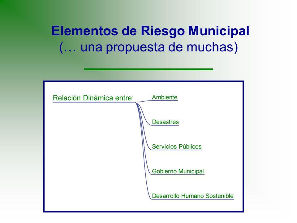 Elementos de Riesgo Municipal (… una propuesta de muchas)