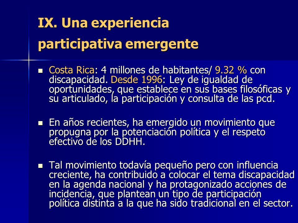IX. Una experiencia participativa emergente