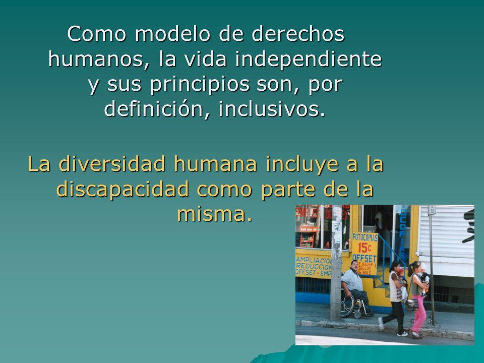 La diversidad humana incluye a la discapacidad como parte de la misma.