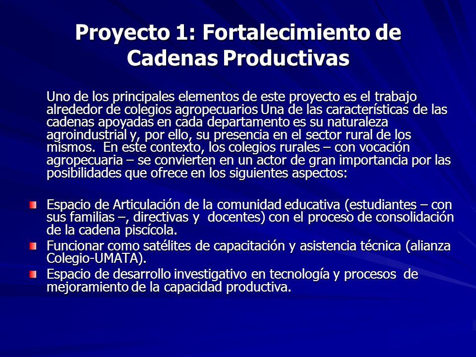 Proyecto 1: Fortalecimiento de Cadenas Productivas