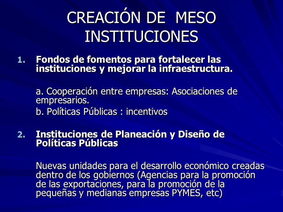CREACIÓN DE MESO INSTITUCIONES
