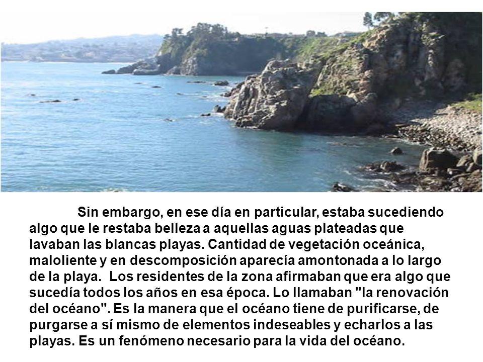 Sin embargo, en ese día en particular, estaba sucediendo algo que le restaba belleza a aquellas aguas plateadas que lavaban las blancas playas.