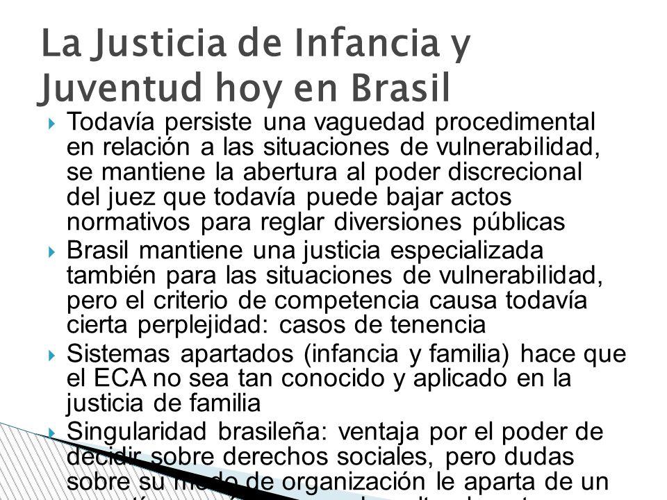 La Justicia de Infancia y Juventud hoy en Brasil