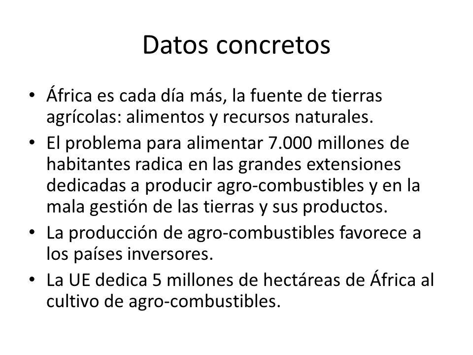 Datos concretos África es cada día más, la fuente de tierras agrícolas: alimentos y recursos naturales.