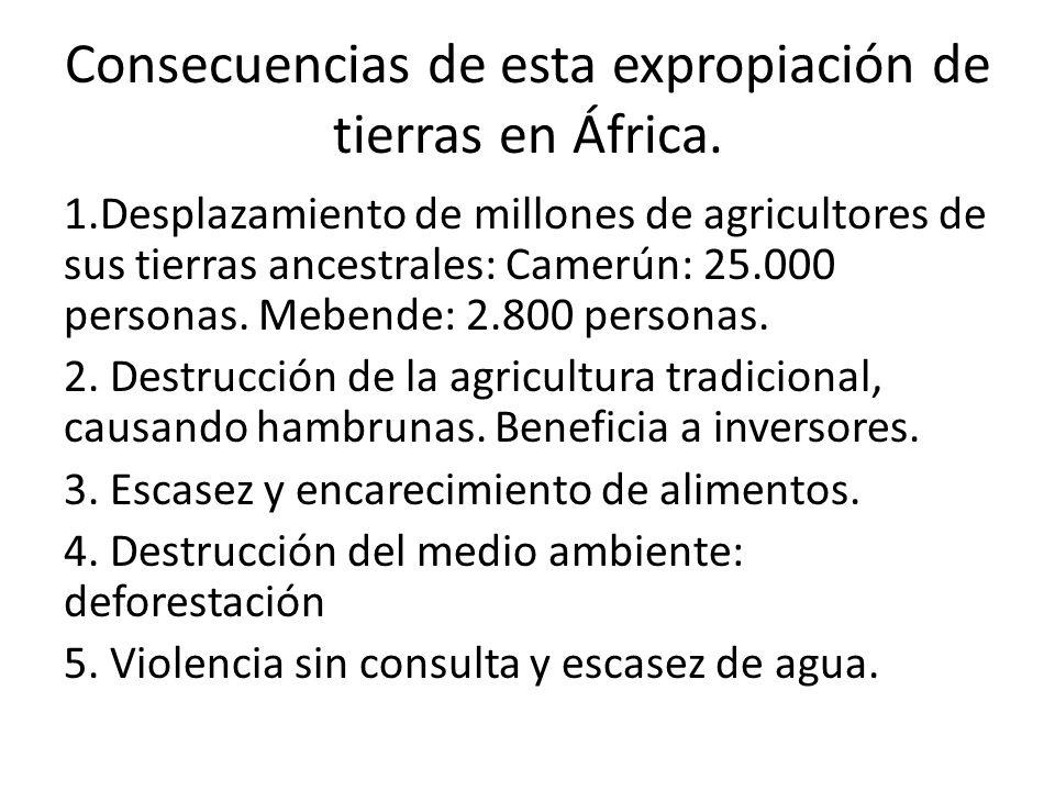 Consecuencias de esta expropiación de tierras en África.