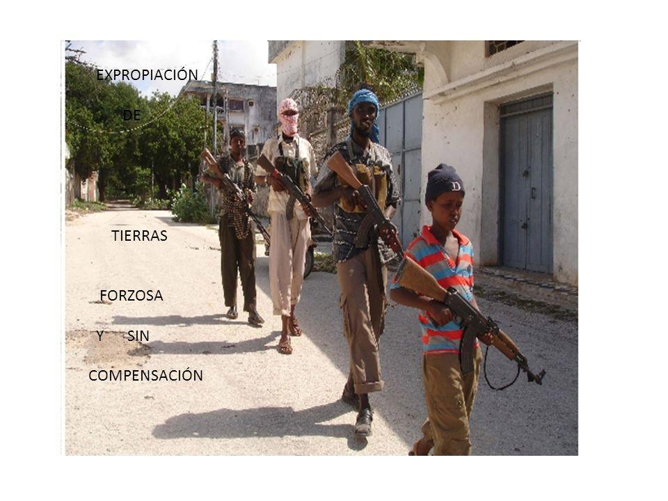 EXPROPIACIÓN DE TIERRAS FORZOSA Y SIN COMPENSACIÓN e