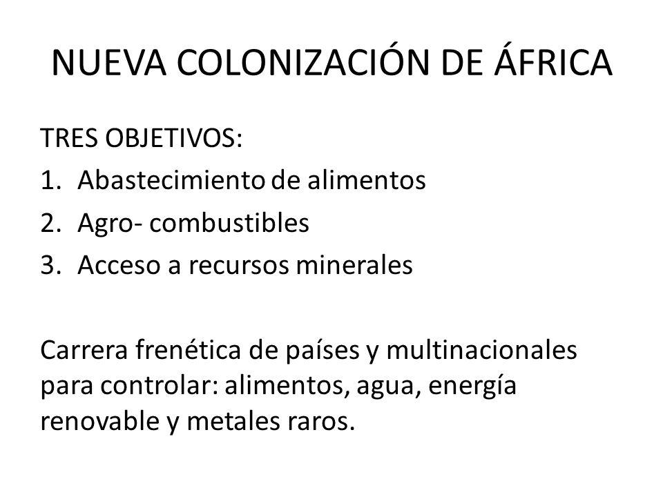 NUEVA COLONIZACIÓN DE ÁFRICA