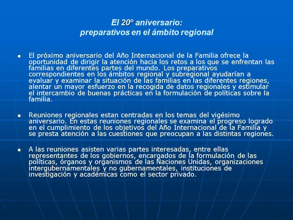 El 20º aniversario: preparativos en el ámbito regional