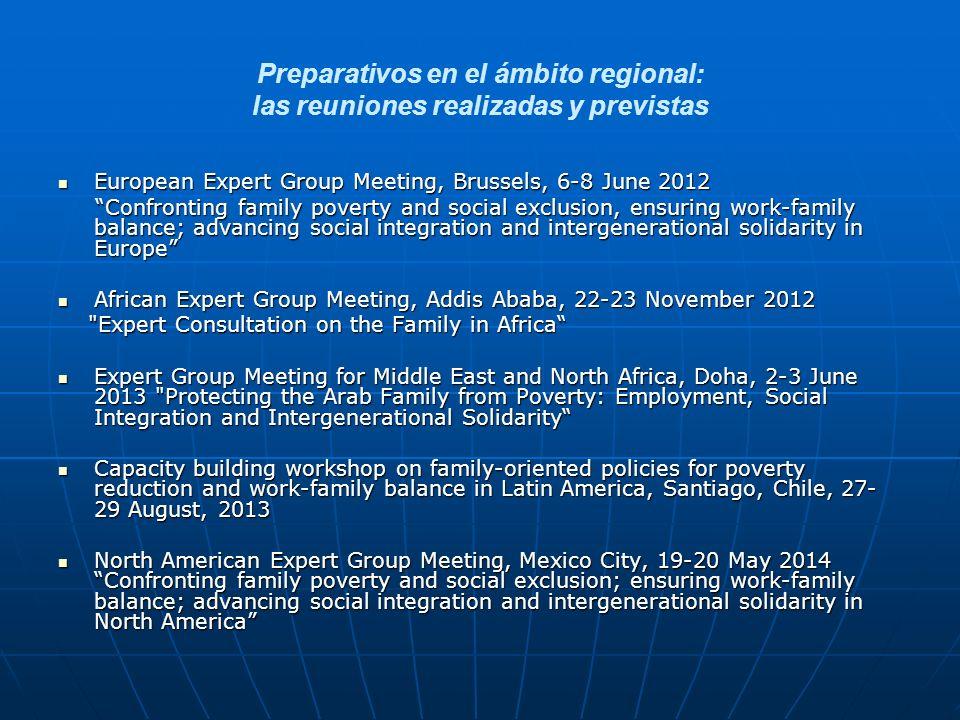 Preparativos en el ámbito regional: las reuniones realizadas y previstas