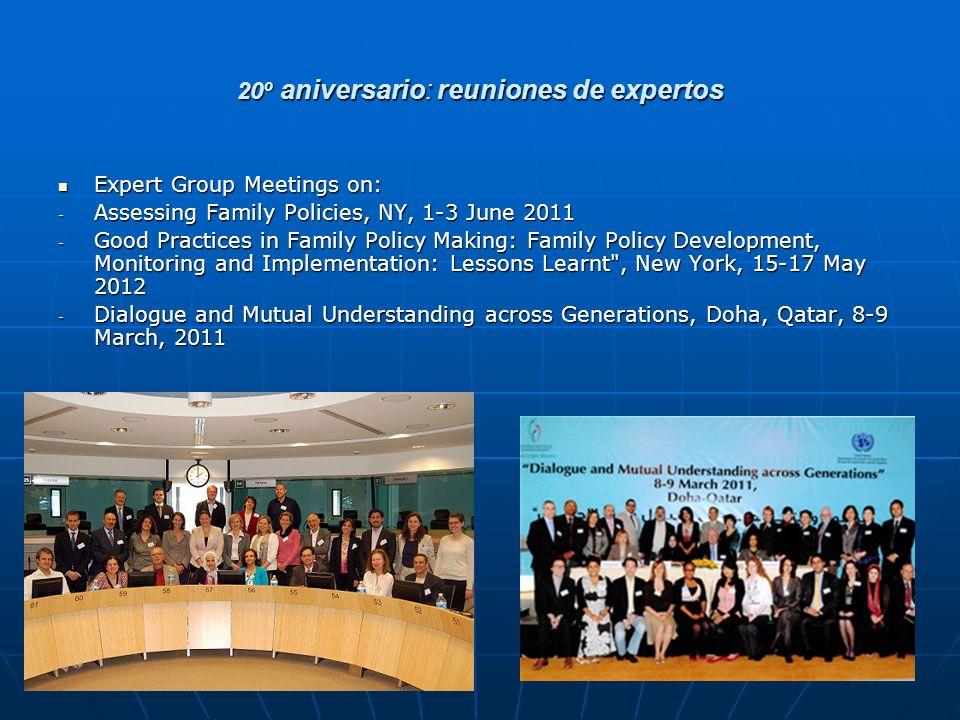 20º aniversario: reuniones de expertos