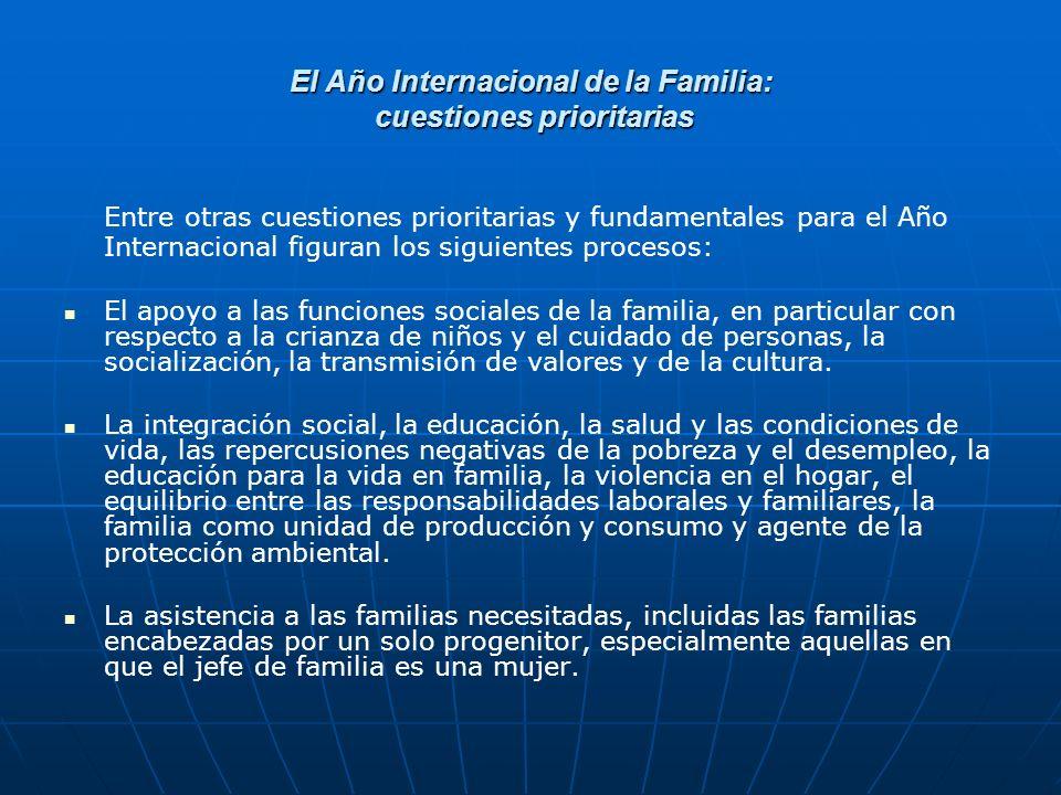 El Año Internacional de la Familia: cuestiones prioritarias