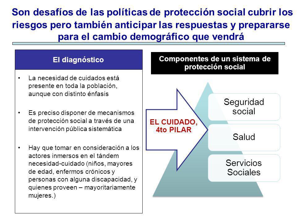 Componentes de un sistema de protección social