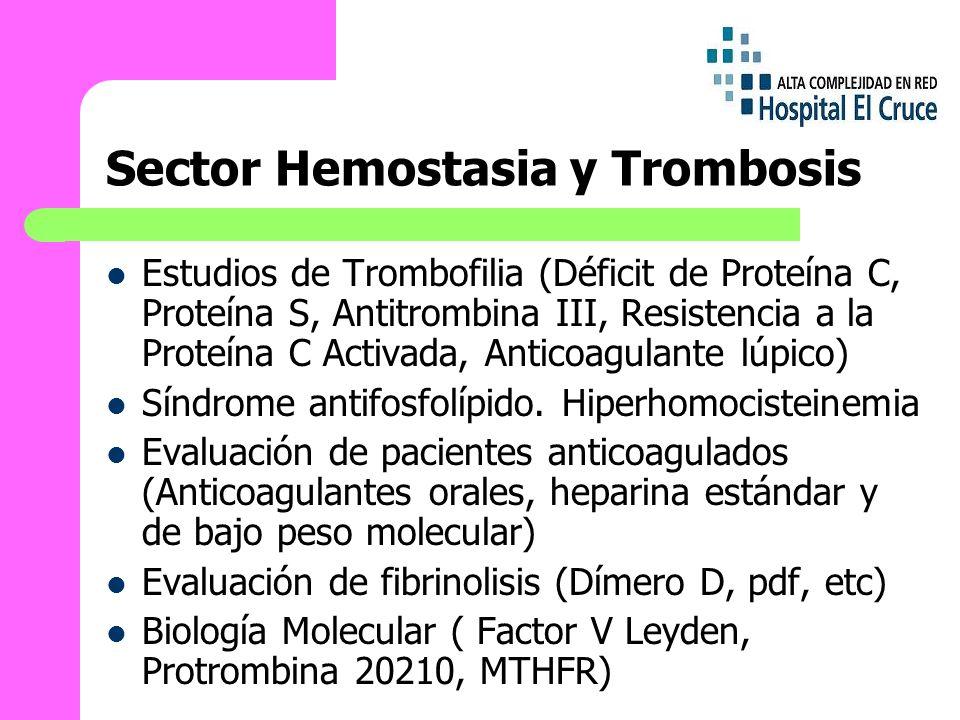Sector Hemostasia y Trombosis