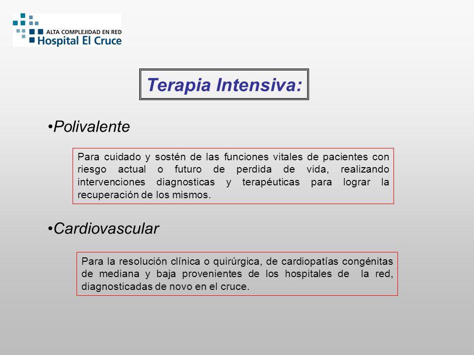 Terapia Intensiva: Polivalente Cardiovascular