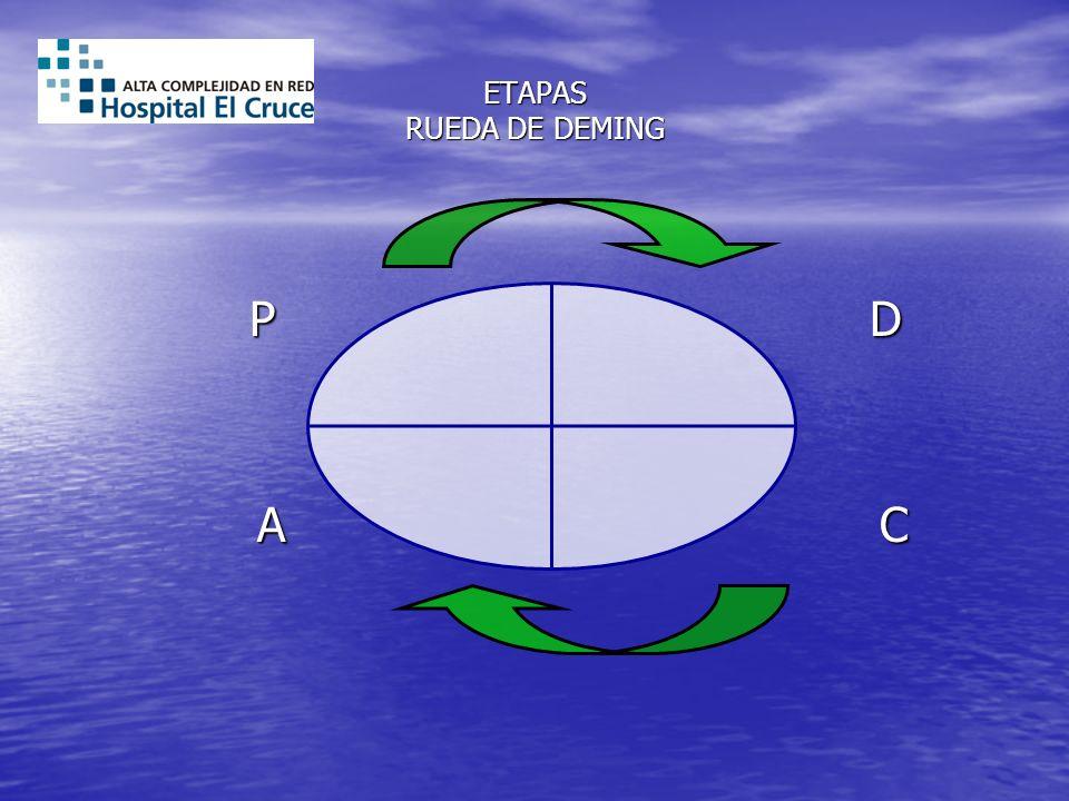 ETAPAS RUEDA DE DEMING P D.