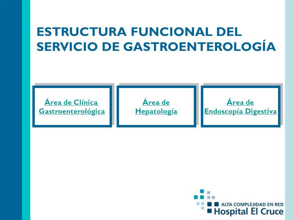 ESTRUCTURA FUNCIONAL DEL SERVICIO DE GASTROENTEROLOGÍA