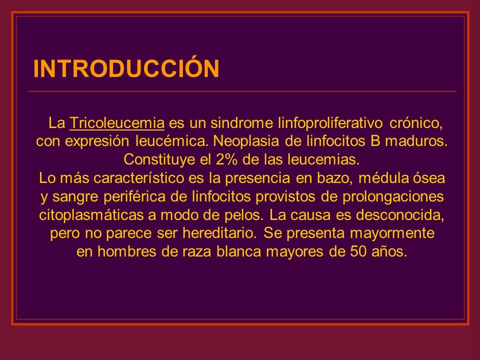 INTRODUCCIÓN La Tricoleucemia es un sindrome linfoproliferativo crónico, con expresión leucémica. Neoplasia de linfocitos B maduros.