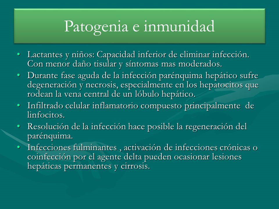 Patogenia e inmunidad Lactantes y niños: Capacidad inferior de eliminar infección. Con menor daño tisular y síntomas mas moderados.