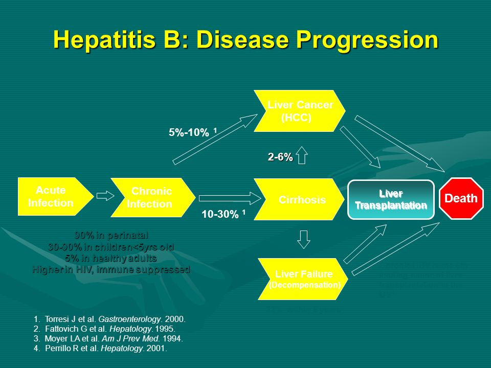 Hepatitis B: Disease Progression