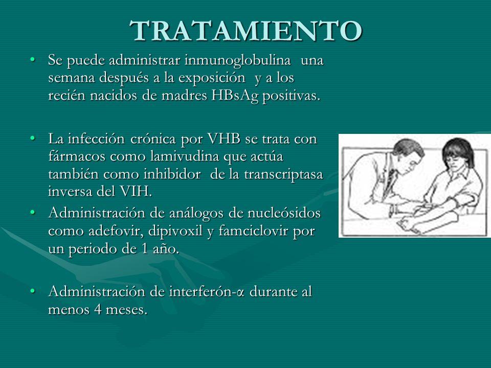 TRATAMIENTO Se puede administrar inmunoglobulina una semana después a la exposición y a los recién nacidos de madres HBsAg positivas.