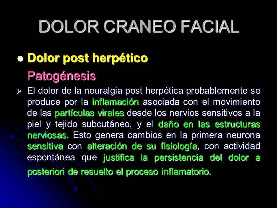 DOLOR CRANEO FACIAL Dolor post herpético Patogénesis