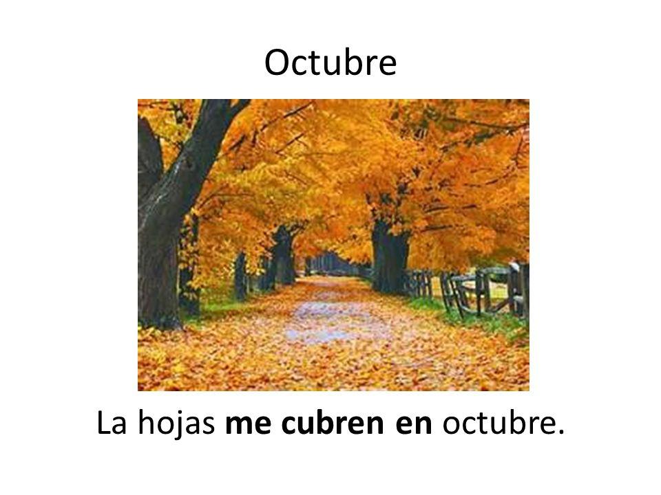 La hojas me cubren en octubre.