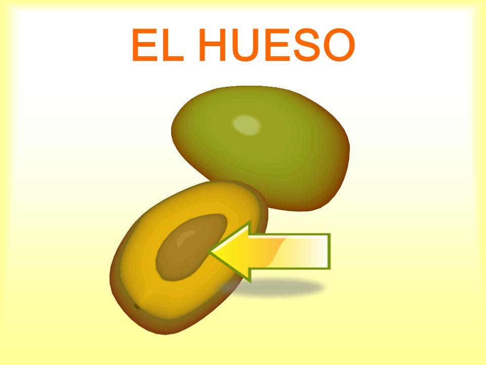 EL HUESO