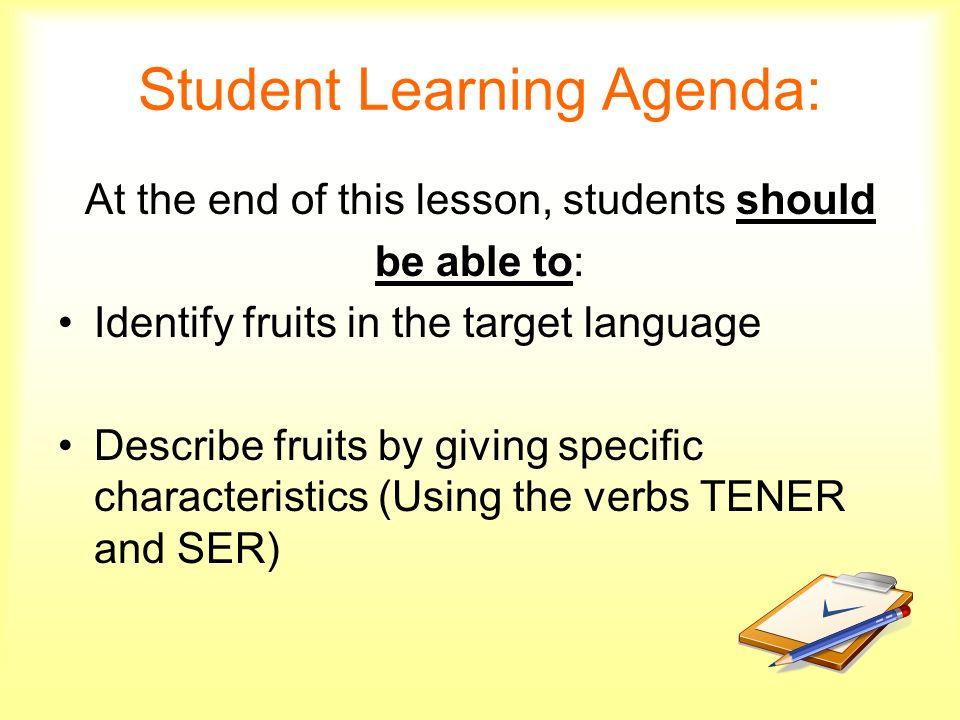 Student Learning Agenda:
