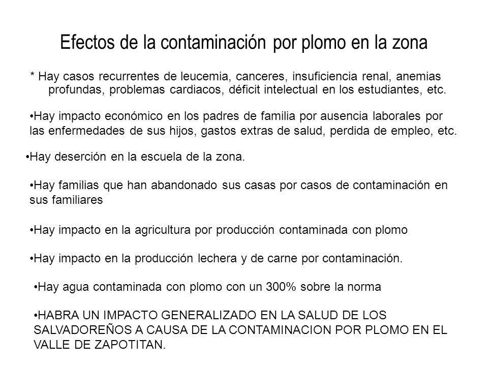 Efectos de la contaminación por plomo en la zona