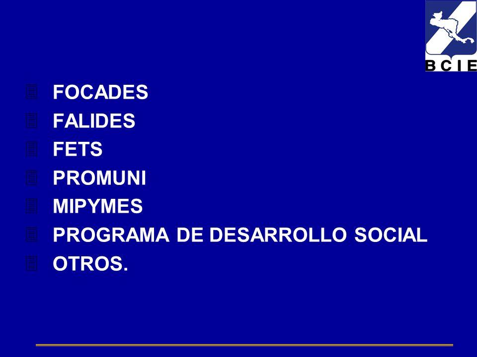 FOCADES FALIDES FETS PROMUNI MIPYMES PROGRAMA DE DESARROLLO SOCIAL OTROS.