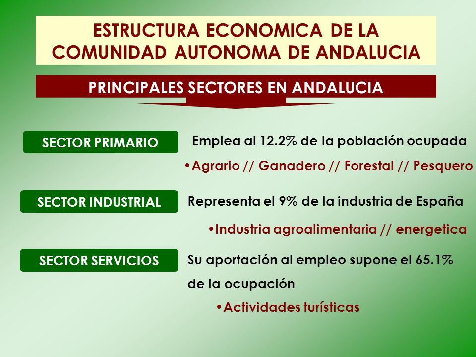 ESTRUCTURA ECONOMICA DE LA COMUNIDAD AUTONOMA DE ANDALUCIA