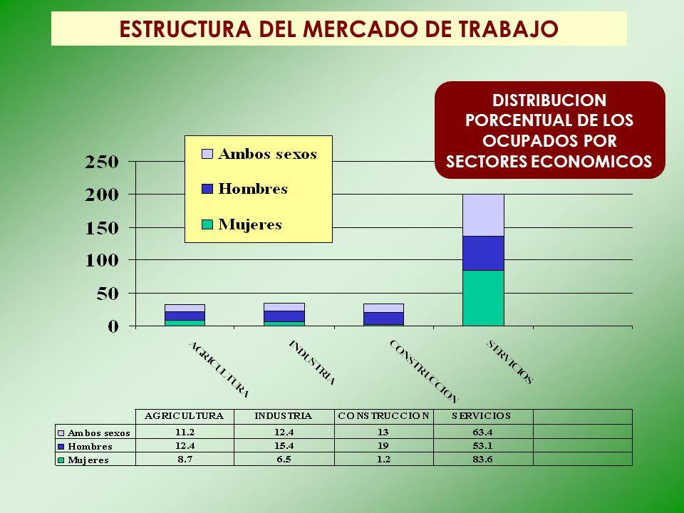 ESTRUCTURA DEL MERCADO DE TRABAJO