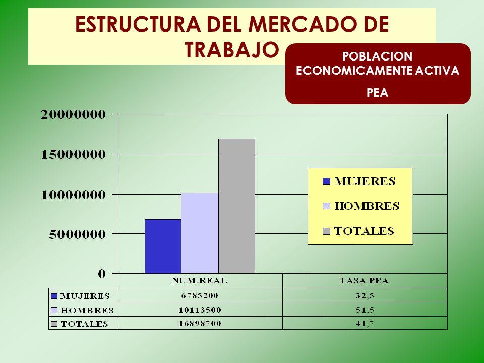 ESTRUCTURA DEL MERCADO DE TRABAJO POBLACION ECONOMICAMENTE ACTIVA