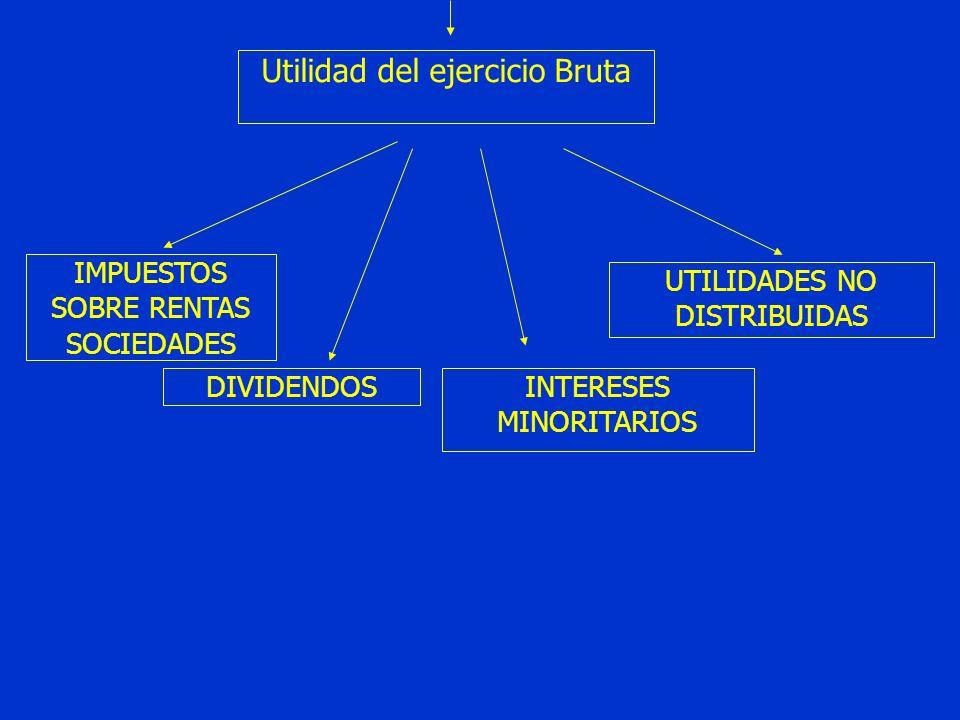 Utilidad del ejercicio Bruta