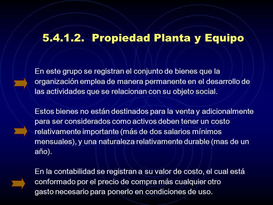 5.4.1.2. Propiedad Planta y Equipo