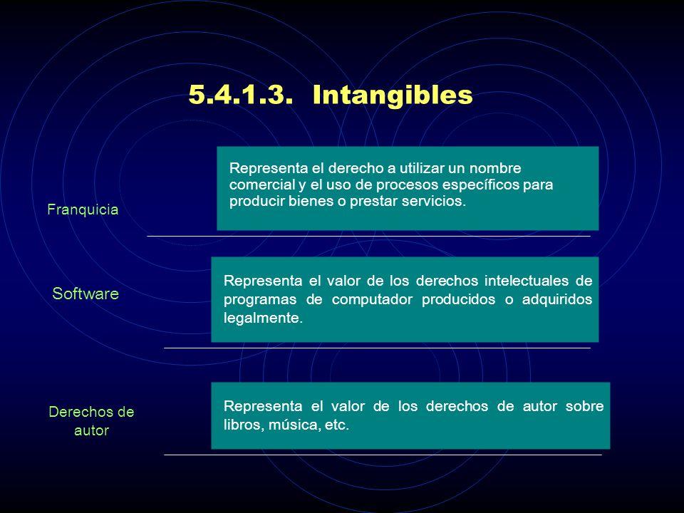 5.4.1.3. Intangibles Representa el derecho a utilizar un nombre comercial y el uso de procesos específicos para producir bienes o prestar servicios.