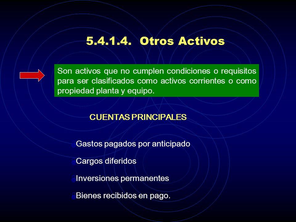5.4.1.4. Otros Activos