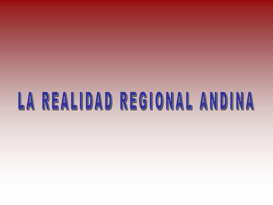 LA REALIDAD REGIONAL ANDINA