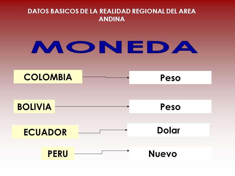 DATOS BASICOS DE LA REALIDAD REGIONAL DEL AREA ANDINA