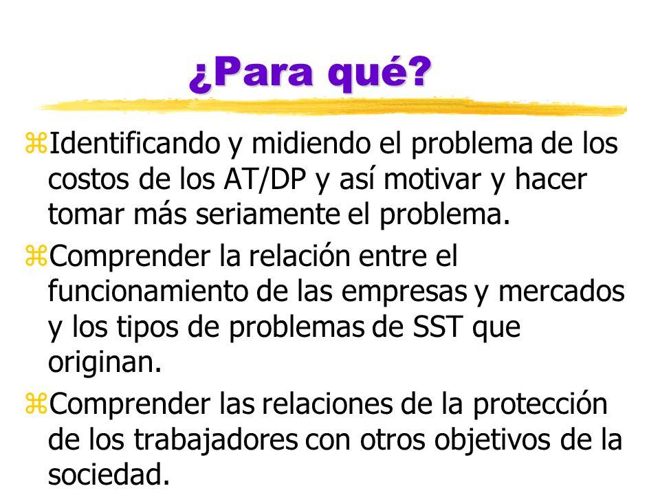 ¿Para qué Identificando y midiendo el problema de los costos de los AT/DP y así motivar y hacer tomar más seriamente el problema.