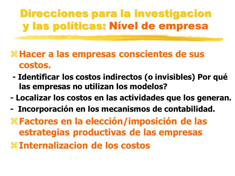 Direcciones para la investigacion y las políticas: Nível de empresa