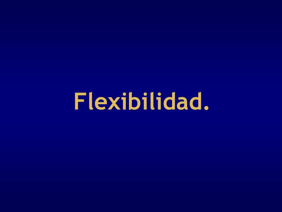 Flexibilidad.