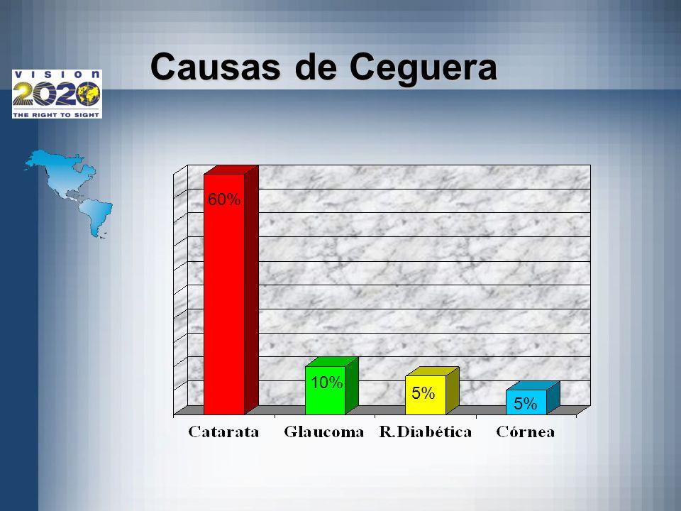 Causas de Ceguera Grafica de caausas de ceguera 60% 10% 5% 5%